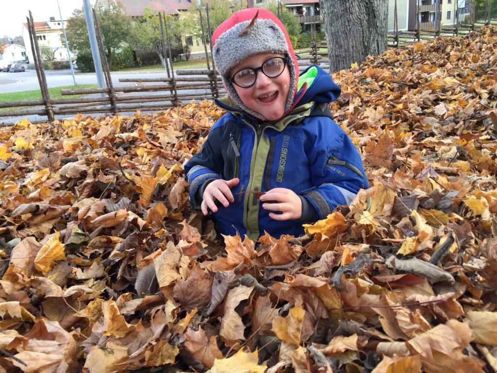 Axel von Koch ler och leker i en hög av höstlöv. På sig har han en rödgrå mössa, glasögon och blågrön jacka.