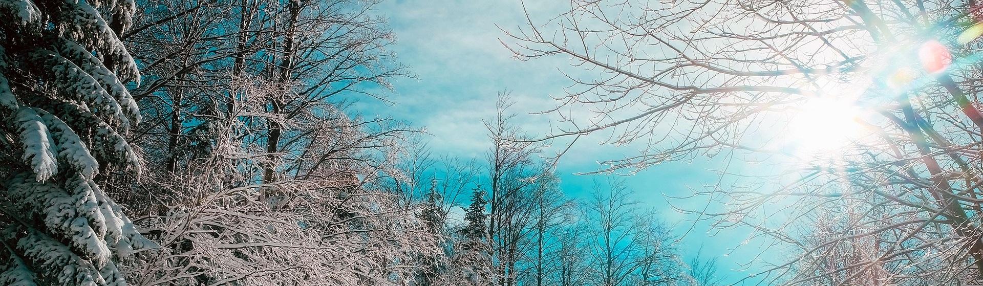 Blå bakgrundsbild, sol över vinterlandskap med blå himmel.